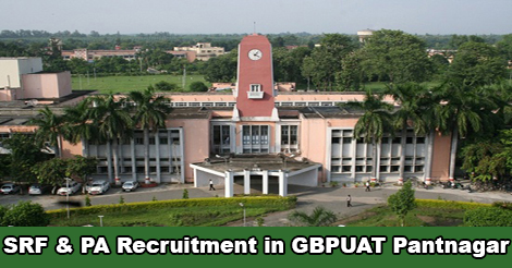 SRF and Project Assistant Recruitment in GBPUAT Pantnagar