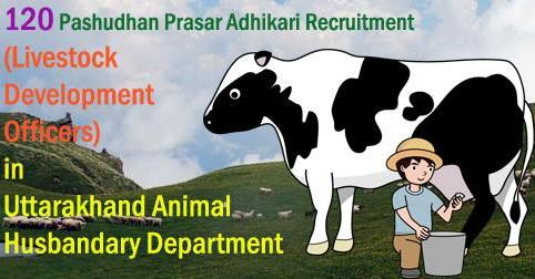 Pashudhan Prasar Adhikari or Livestock Development Officers Vacancy in Uttarakhand Animal Husbandary Department