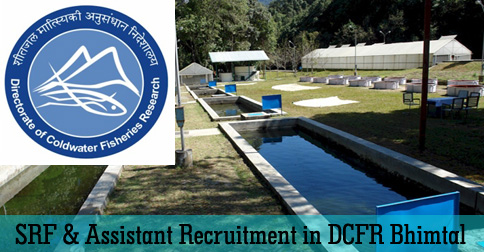 DCFR Bhimtal Jobs & Recruitments
