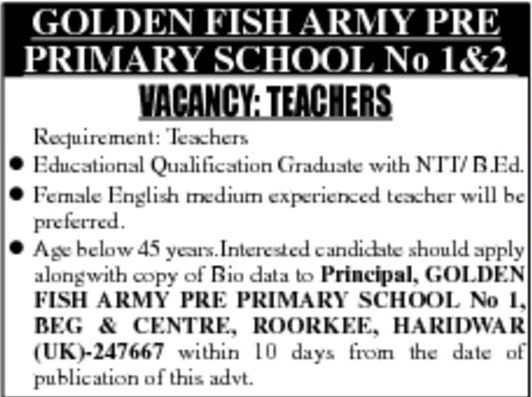 Primary Teachers Vacancy Golden Fish Army Pre Primary School Roorkee