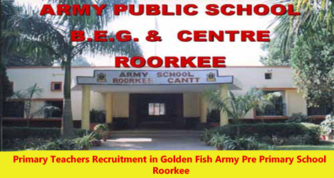 Teachers Vacancy Golden Fish Army Pre Primary School Roorkee