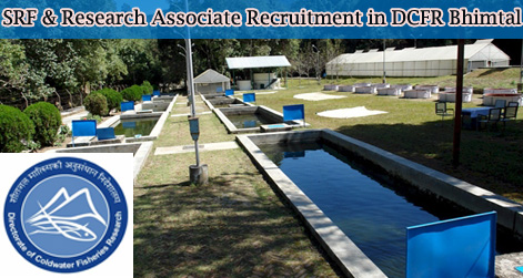 SRF & Research Associate Recruitment in DCFR Bhimtal
