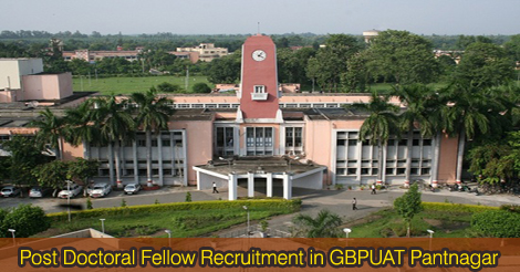 Post Doctoral Fellow Recruitment in GBPUAT Pantnagar