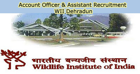 Account Officer & Assistant Recruitment in WII Dehradun