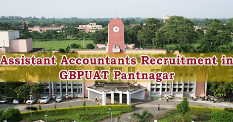 Assistant Accountants Recruitment in GBPUAT Pantnagar