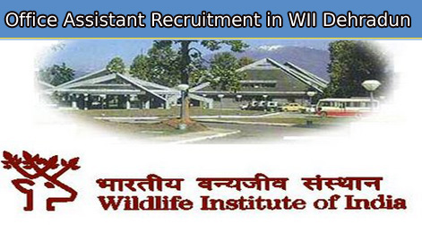 Office Assistant Recruitment in WII Dehradun