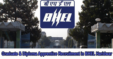 Graduate & Diploma Apprentice Recruitment in BHEL Haridwar
