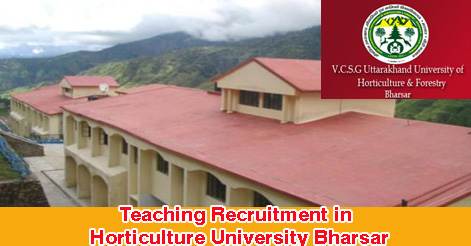 Teaching Vacancies in VCSG UUHF Bharsar