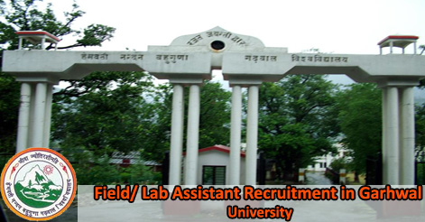 Field Lab Assistant Recruitment in HNB Garhwal University