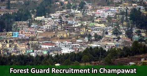 Forest Guard Recruitment in Champawat