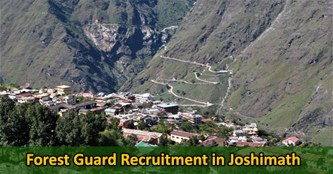 Forest Guard Recruitment in Joshimath
