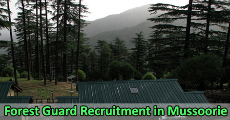 Forest Guard Recruitment in Mussoorie