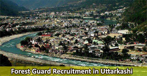 Forest Guard Recruitment in Uttarkashi