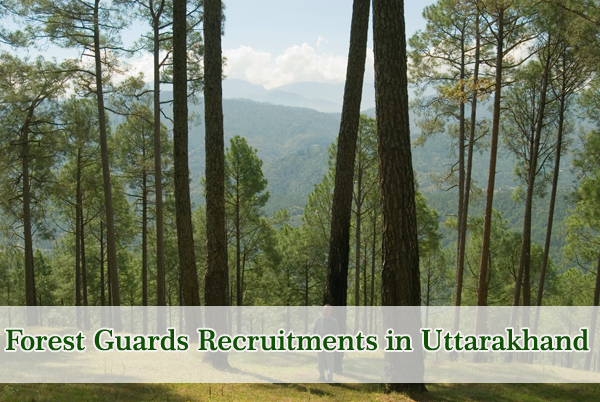 Forest Guards Sarkari Naukri in Uttarakhand