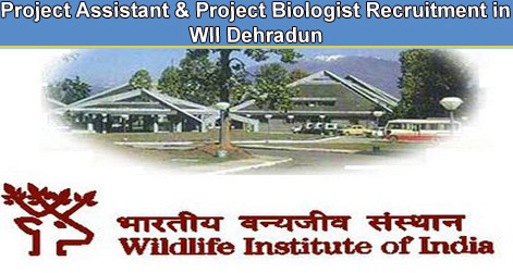 Project Assistant & Project Biologist Recruitment in WII Dehradun