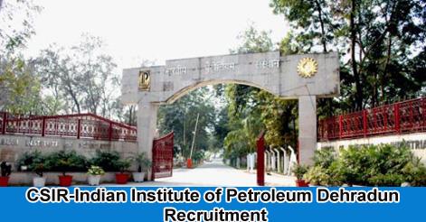 Scientists Recruitment in IIP Dehradun