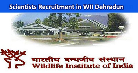 Scientists Recruitment in WII Dehradun