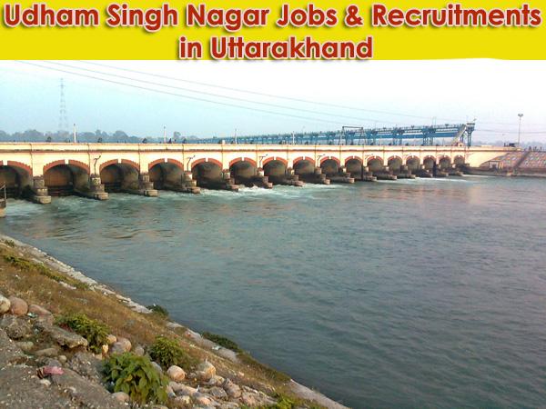 Udham Singh Nagar Sarkari Naukri in Uttarakhand