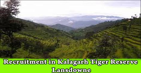 Recruitment in Kalagarh Tiger Reserve Lansdowne