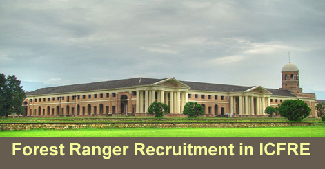 Forest Ranger Recruitment in ICFRE