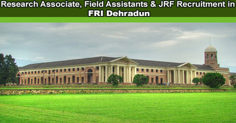 Research Associate, Field Assistants & JRF Recruitment in FRI Dehradun