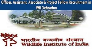Officer, Assistant, Associate & Project Fellow Recruitment in WII Dehradun