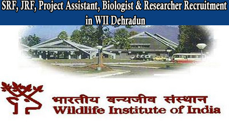SRF, JRF, Project Assistant, Biologist & Researcher Recruitment in WII Dehradun