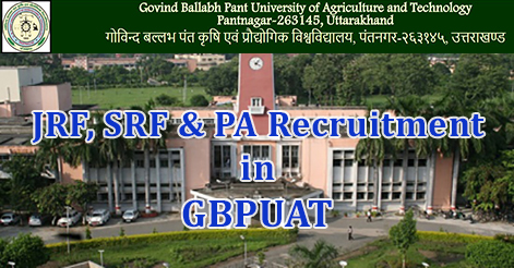 JRF, SRF & PA Recruitment in GBPUAT
