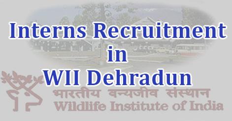Interns Recruitment in WII Dehradun