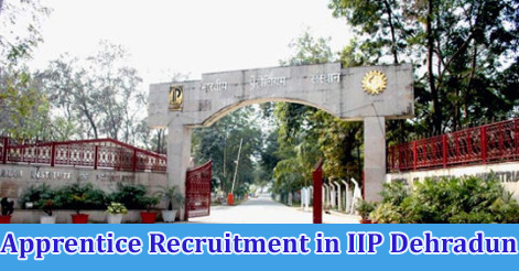 Apprentice Recruitment in IIP Dehradun