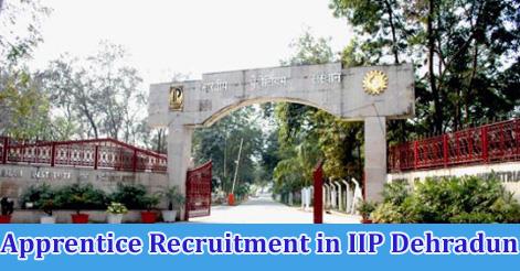 Apprentice Recruitment in IIP Dehradun
