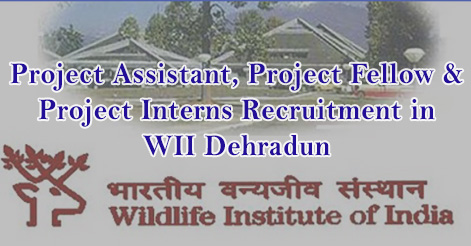 Project Assistant, Project Fellow & Project Interns Recruitment in WII Dehradun