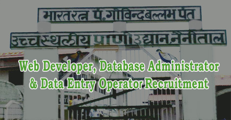 Web Developer, Database Administrator & Data Entry Operator Recruitment in Nainital Zoo
