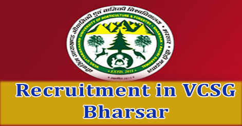 Librarian, Director, Account Officer, Assistant Recruitment in VCSG, Bharsar