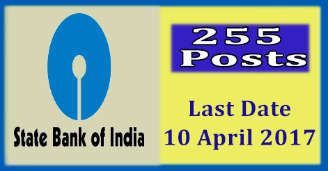 Specialist Officer Recruitment in State Bank of India