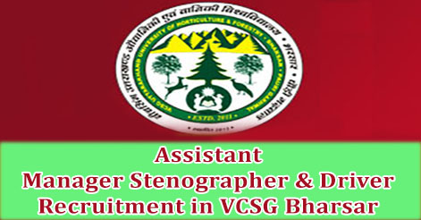 Assistant Manager Stenographer & Driver Recruitment in VCSG Bharsar