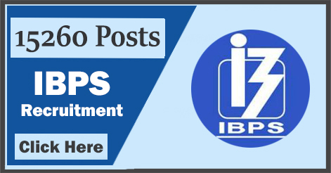 15260 IBPS Officers and Office Assistant Recruitment 2017