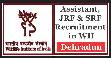 Assistant, JRF & SRF Recruitment in WII Dehradun