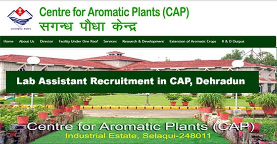 Lab Assistant Vacancy in Centre for Aromatic Plants Selaqui Dehradun
