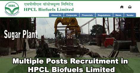 56 Management, Non-Management & Seasonal Posts Recruitment in HPCL Biofuels Ltd.