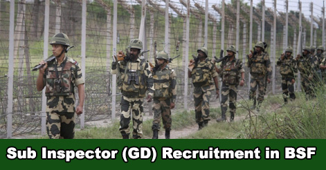 224 Sub-Inspector (GD) Recruitment in BSF