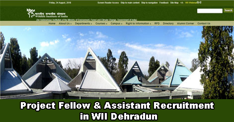 Project Fellow & Project Assistant Recruitment in WII Dehradun