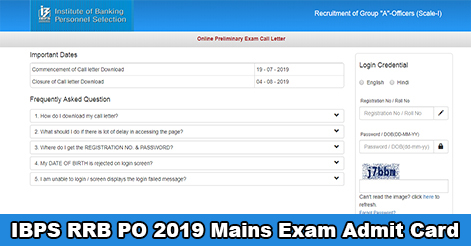 IBPS RRB PO Admit Card Out