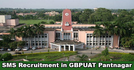 Subject Matter Specialist Recruitment in GBPUAT Pantnagar