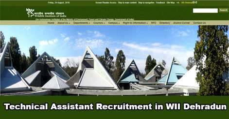 Technical Assistant Recruitment in WII Dehradun