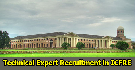 Technical Expert Recruitment in ICFRE Dehradun