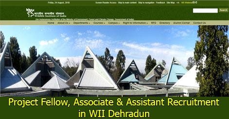 Project Fellow, Associate & Assistant Recruitment in WII Dehradun